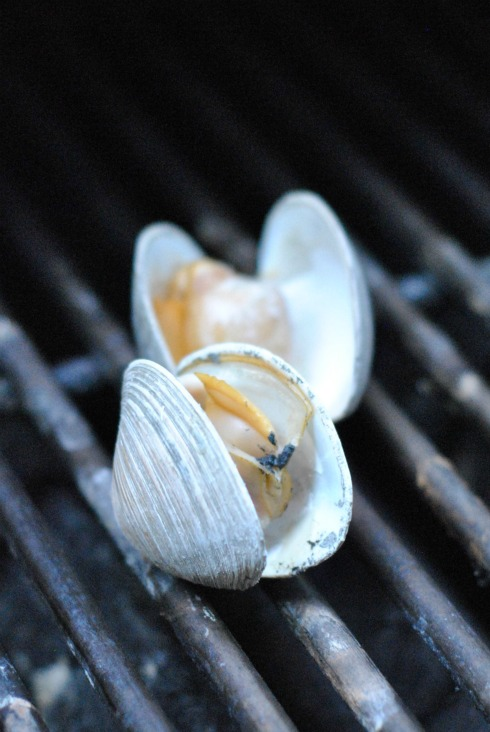 Cherrystone Clams on Grill Grates