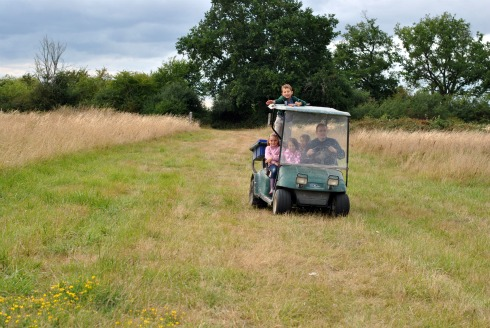 golf cart in field