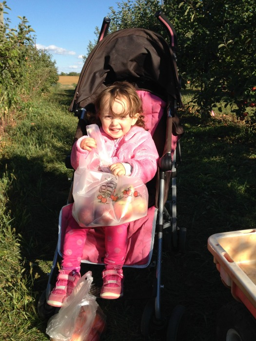 Sophie apple picking