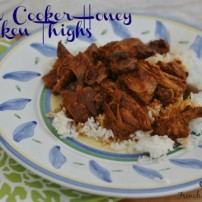 Vaguely Asian Honey Tomato Chicken Thighs: a Quick and Easy Slow Cooker Recipe