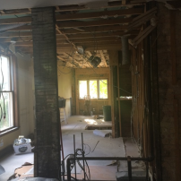 Living the Dream: Renovation Update