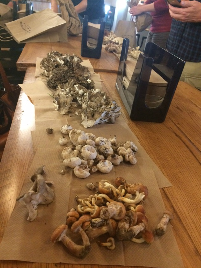 My personal mushroom haul at the end of the day. Not bad!