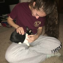 Consider the Bunny: Not as a Meal but as a Pet